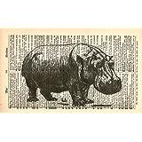 HIPPOPOTAMUS ART PRINT - VINTAGE ART PRINT - Animal Art Print - HIPPO ART PRINT -