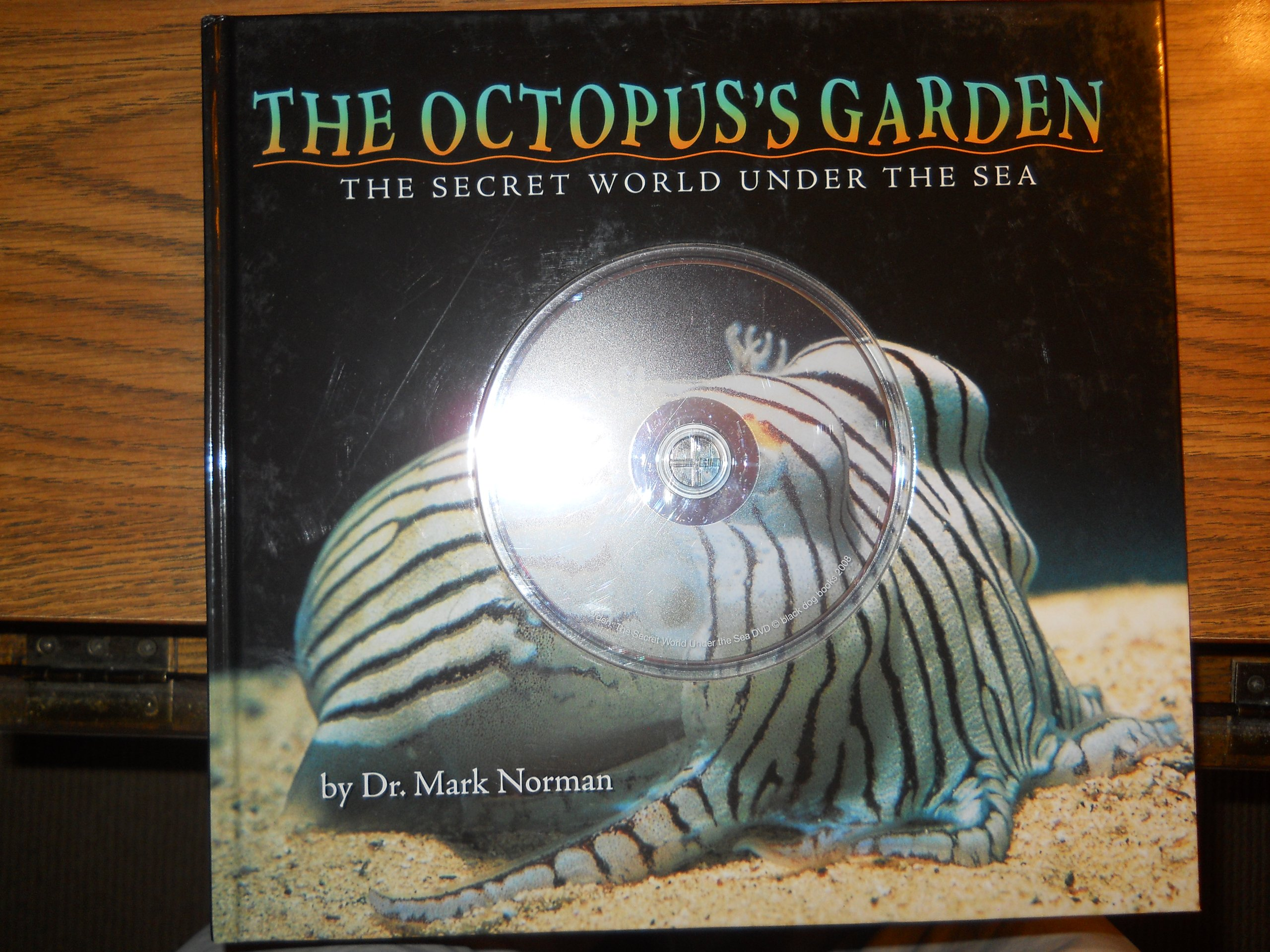 Download The Octopus's Garden pdf