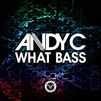 What Bass / Speed Of Light (Andy C Remix) (Vinyl)