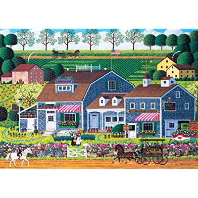 Buffalo Games - Charles Wysocki - Prairie Wind Flowers - 300 Large Piece Jigsaw Puzzle: Toys & Games