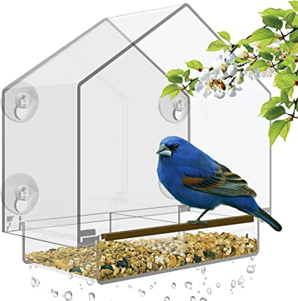 Amazon Com Window Bird Feeder Large Bird House For Outside Removable Sliding Tray With Drain Holes Best For Wild Birds Clear Acrylic Easy To Clean Great Gift For All Weather