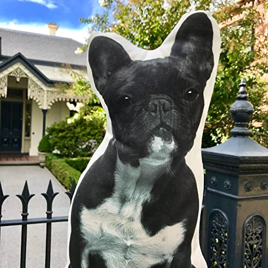 Cushion French Bulldog Black and White Shaped Pillow - with Real Life French Bulldog Size of 16