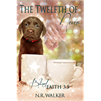 Twelfth of Never (Blind Faith Series 3.5) (English Edition)