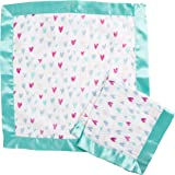 Aden by Aden + Anais Security Blanket 2 Pack, Summer Soiree