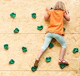 Powerfly Kids Rock Wall Climbing Holds - Set of 2
