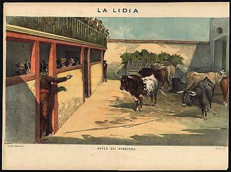 Impresión antigua - Las corridas de toros-tauromachia-torero-españa - PL. 3 de la Lidia-1884: Amazon.es: Hogar