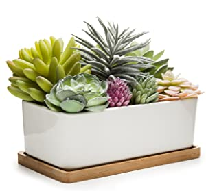 MyGift Potted Artificial Succulents in Ceramic Pot with Bamboo Tray (Plant 2)
