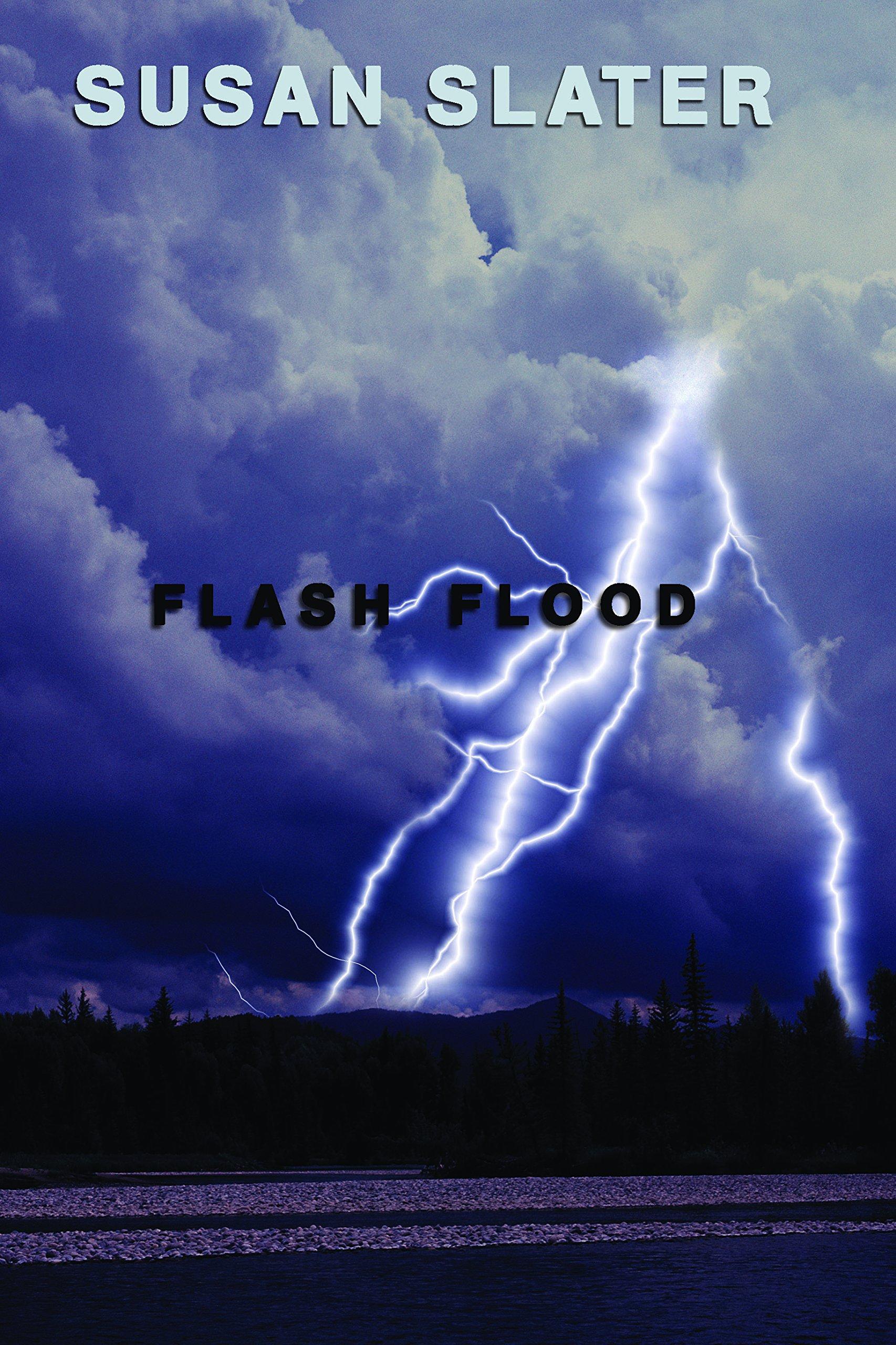 Flash Flood (Dan Mahoney Mysteries) pdf