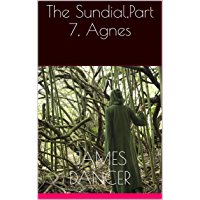 The Sundial,Part 7, Agnes (The Sundial series) (English Edition)