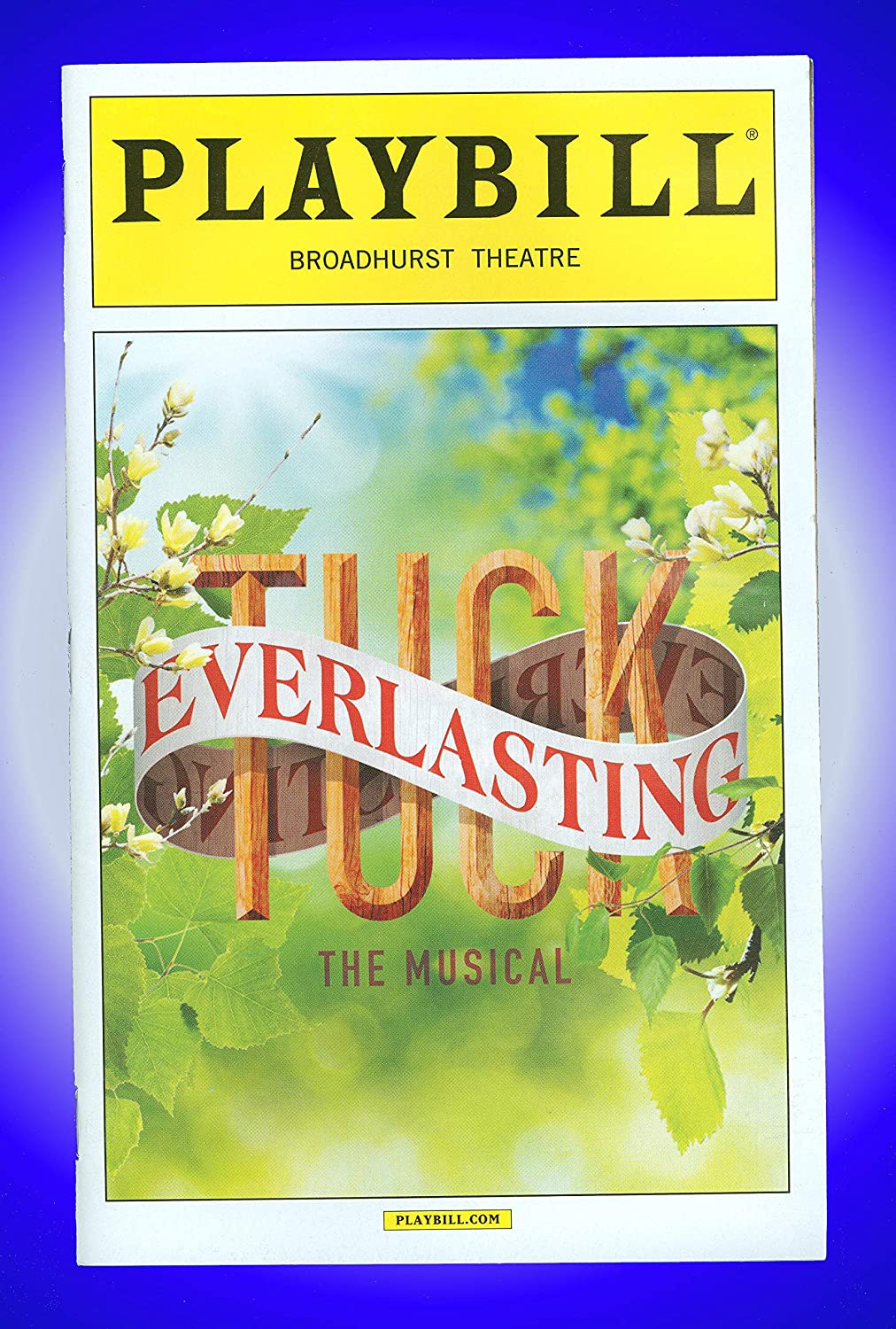 Books By Terrence Mann >> Tuck Everlasting Broadway Playbill Terrence Mann Carolee
