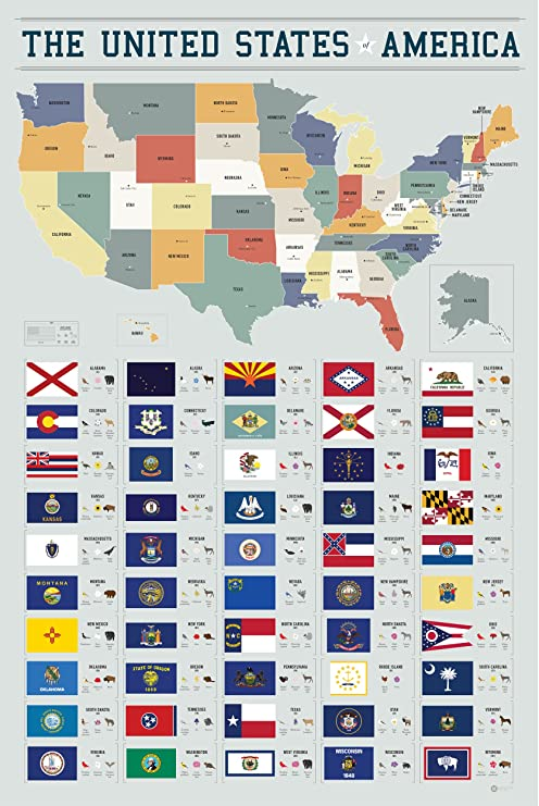Pop Chart Lab PA3-USA 50 Flags of The United States of America by Manhattan  & Ash Poster Print, 24\