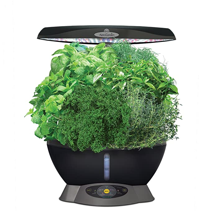 AeroGarden Classic 6 with Gourmet Herb Seed Pod Kit best windowsill herb garden
