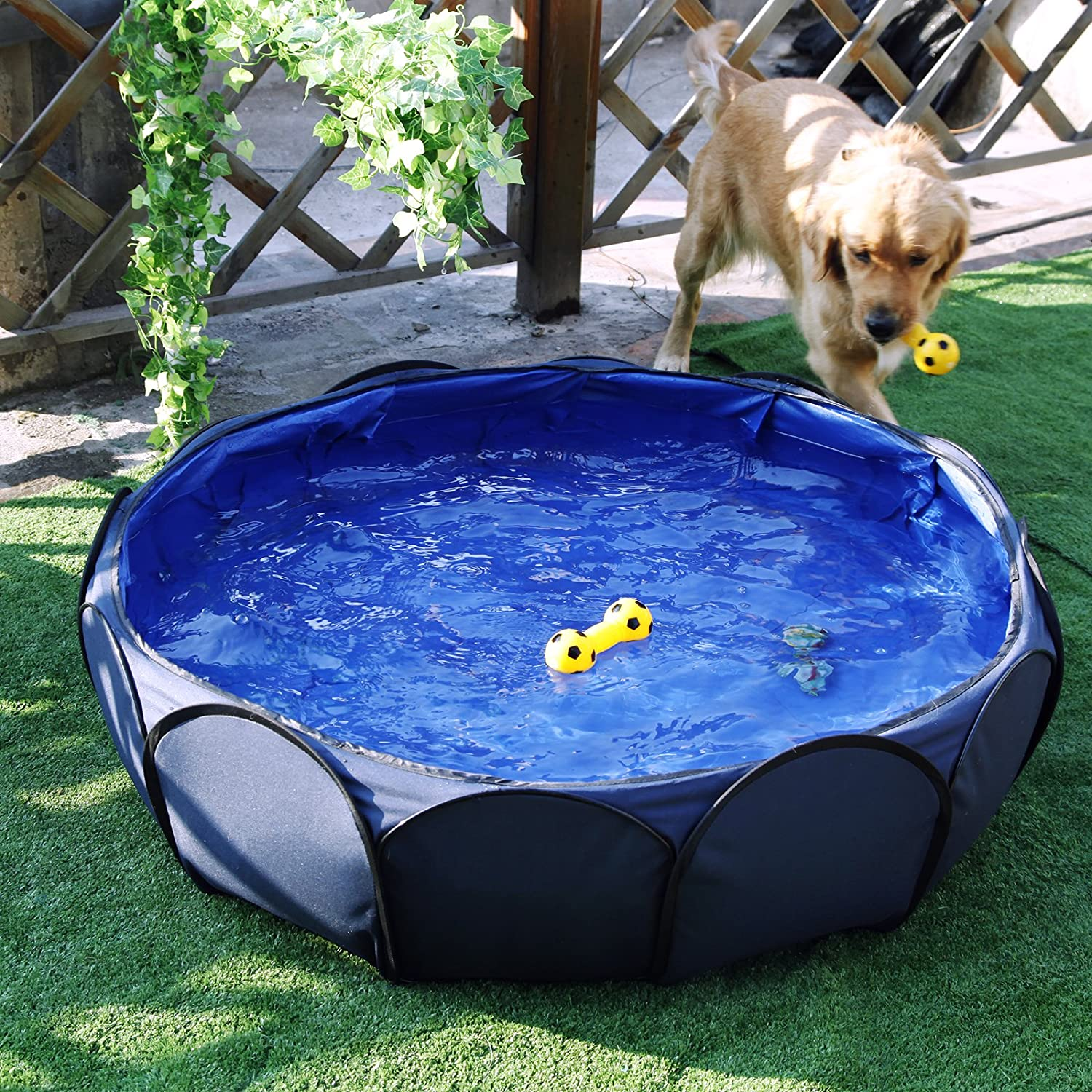 Foldable and portable Pet Swimming Pool,