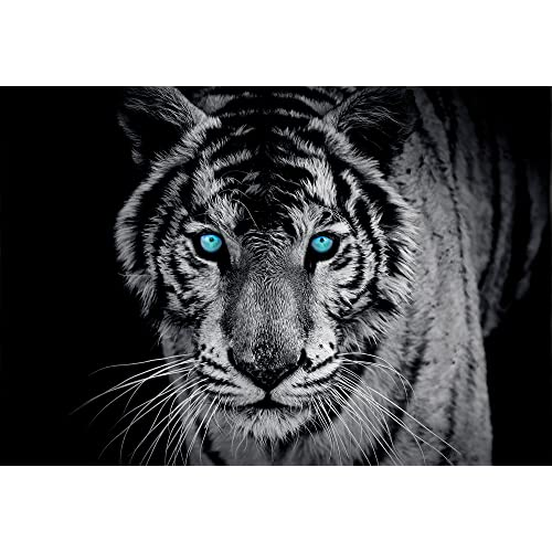 Consalnet Tiger Black White Wallpaper Mural
