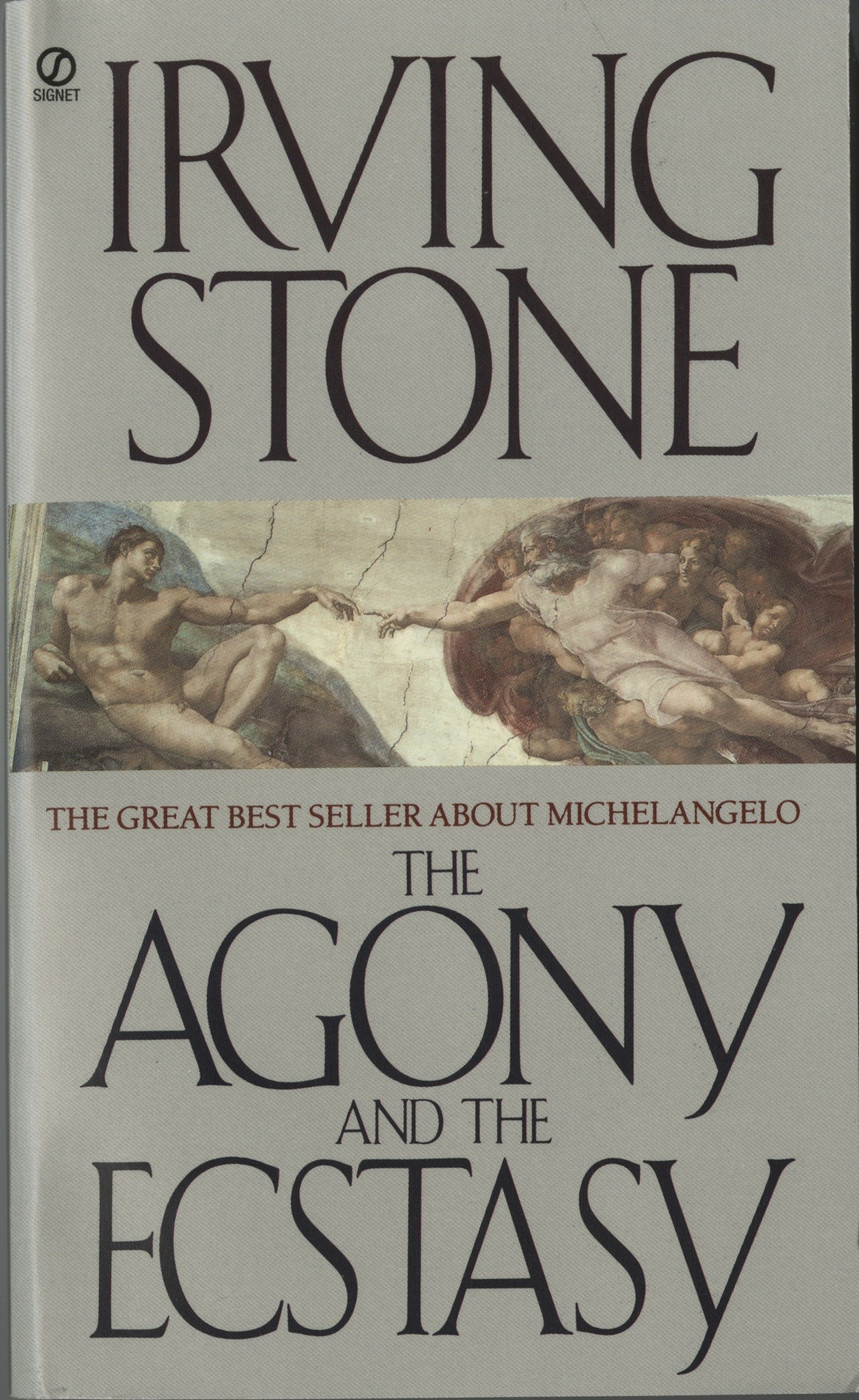 the agony and the ecstacya biographical novel of michelangelo