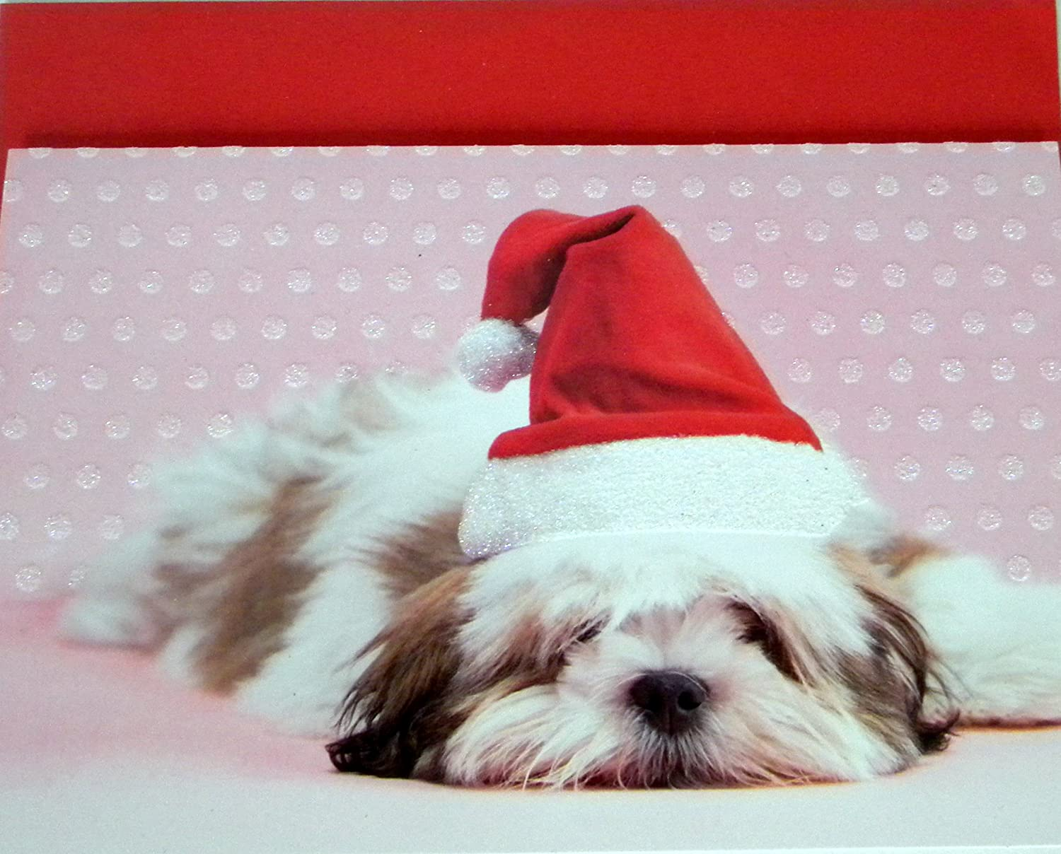 Amazon.com : Shih Tzu Christmas Cards --14 cnt : Office Products