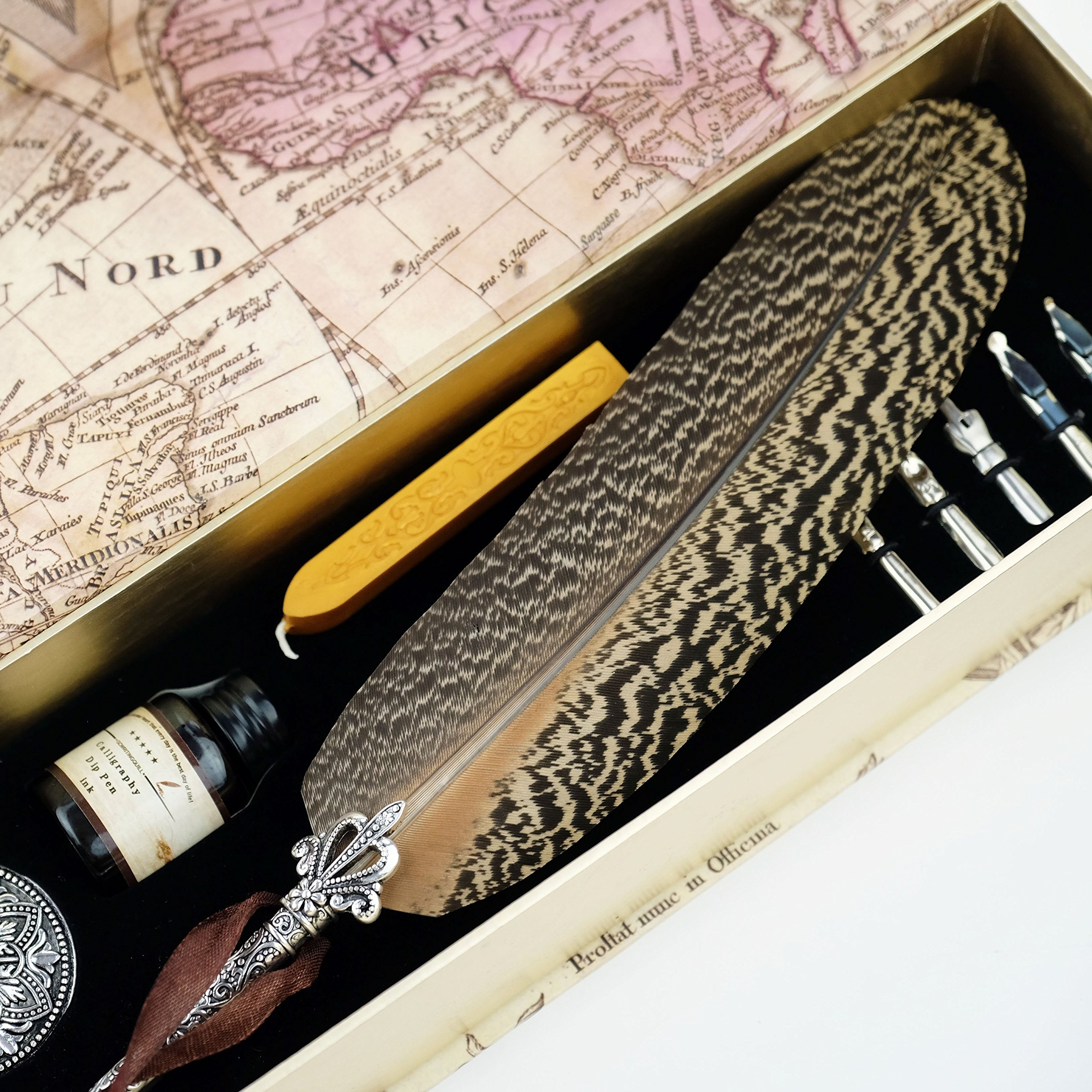 GC Quill Pen Beautiful Nuture Feather Metal Carving Pen Holder 6 Nibs Gift Set GCLL021 by GC Writing Quill (Image #4)