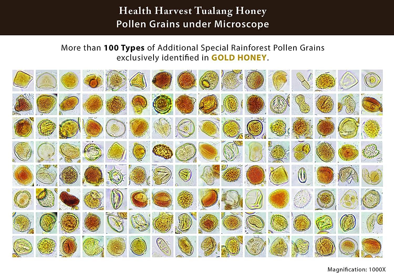 Opción de regalo] Juego de regalo de miel Tualang 50 g x 4 ...