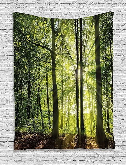 Bedroom Living Room Dorm Wall Hanging Tapestry Green Brown Tap 14626 Forest Sun Beam 06 17 40x60 Ambesonne Farm House Decor Collection Sunny Forest In The Springtime With Sunbeams Rural Areas Jungle Nature Photo Art Home Décor Tapestries