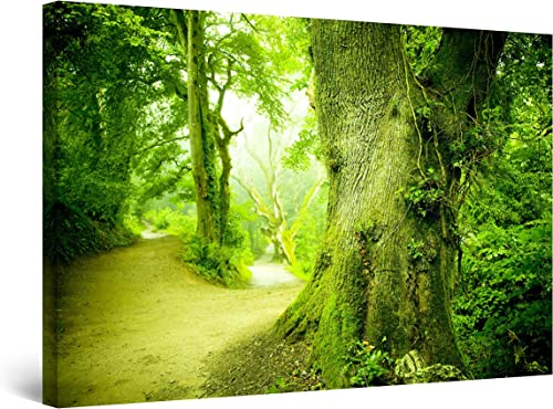 Startonight Wall Art Canvas Fresh Green Forest