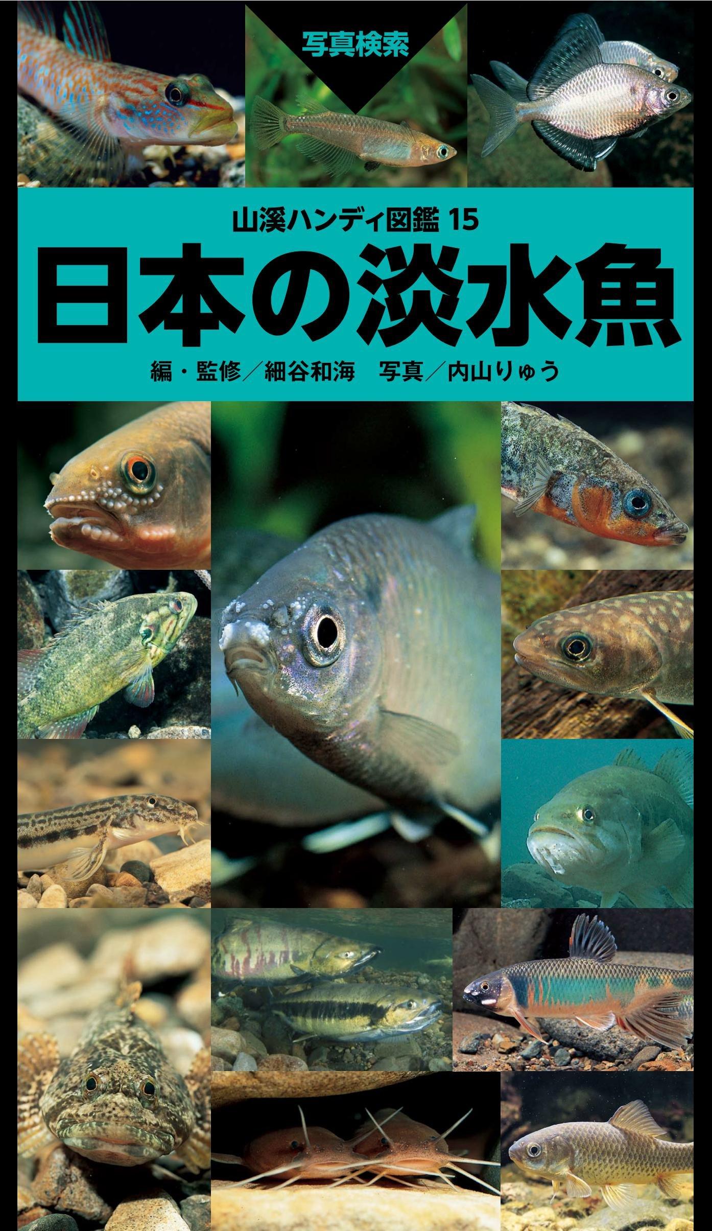日本の淡水魚 (山溪ハンディ図鑑...
