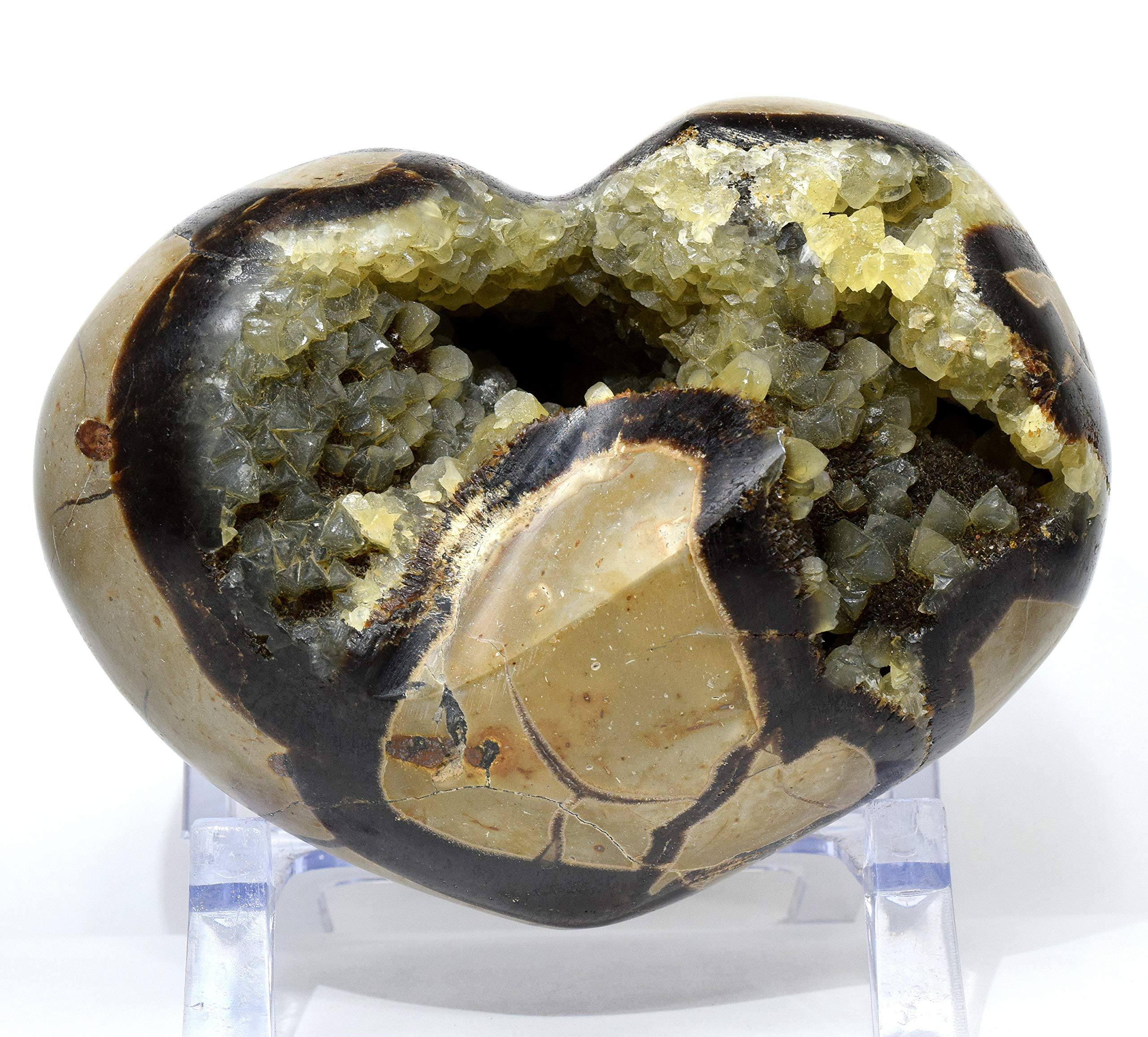 Large 2.8lb 5.25'' Septarian Dragon Stone Puffy Heart Natural Glittering Yellow Calcite Brown Aragonite Crystal Druzy Mineral Polished Love Stone Heart - Madagascar + Acrylic Display Stand