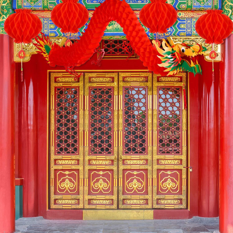 Bememo 21 St/ücke Chinesisches Neujahr Drachen und Chinesische Rote Laternen Dekoration f/ür Chinesische Fr/ühlingsfest Neujahr Hochzeit