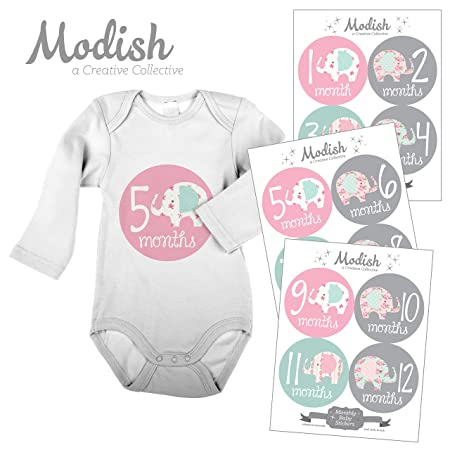aa1b643ac Amazon.com: Modish - Creative Collective 12 Monthly Baby Stickers,  Elephants, Baby Girl, Elephant Baby Belly Stickers, Elephant Monthly Onesie  Stickers, ...