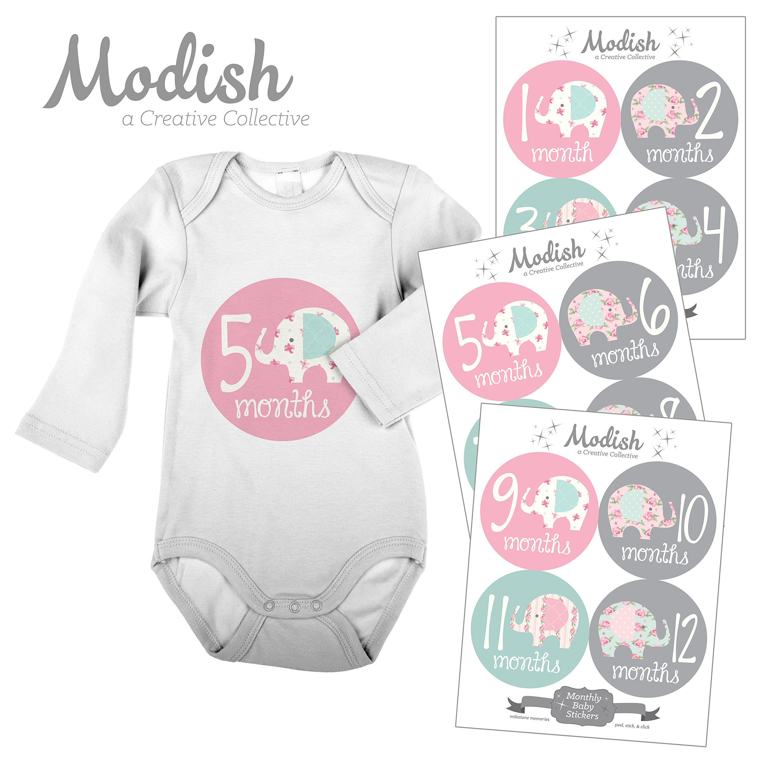 Modish - Creative Collective 12 Monthly Baby Stickers, Elephants, Baby Girl, Elephant Baby Belly Stickers, Elephant Monthly Onesie Stickers, First Year Stickers Months 1-12, Pink/Grey/Teal by Modish