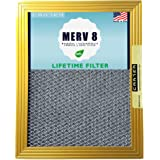 20x25x1 CARTER | MERV 8 | Lifetime HVAC & Furnace Air Filter | Washable Electrostatic | High Dust Holding Capacity…