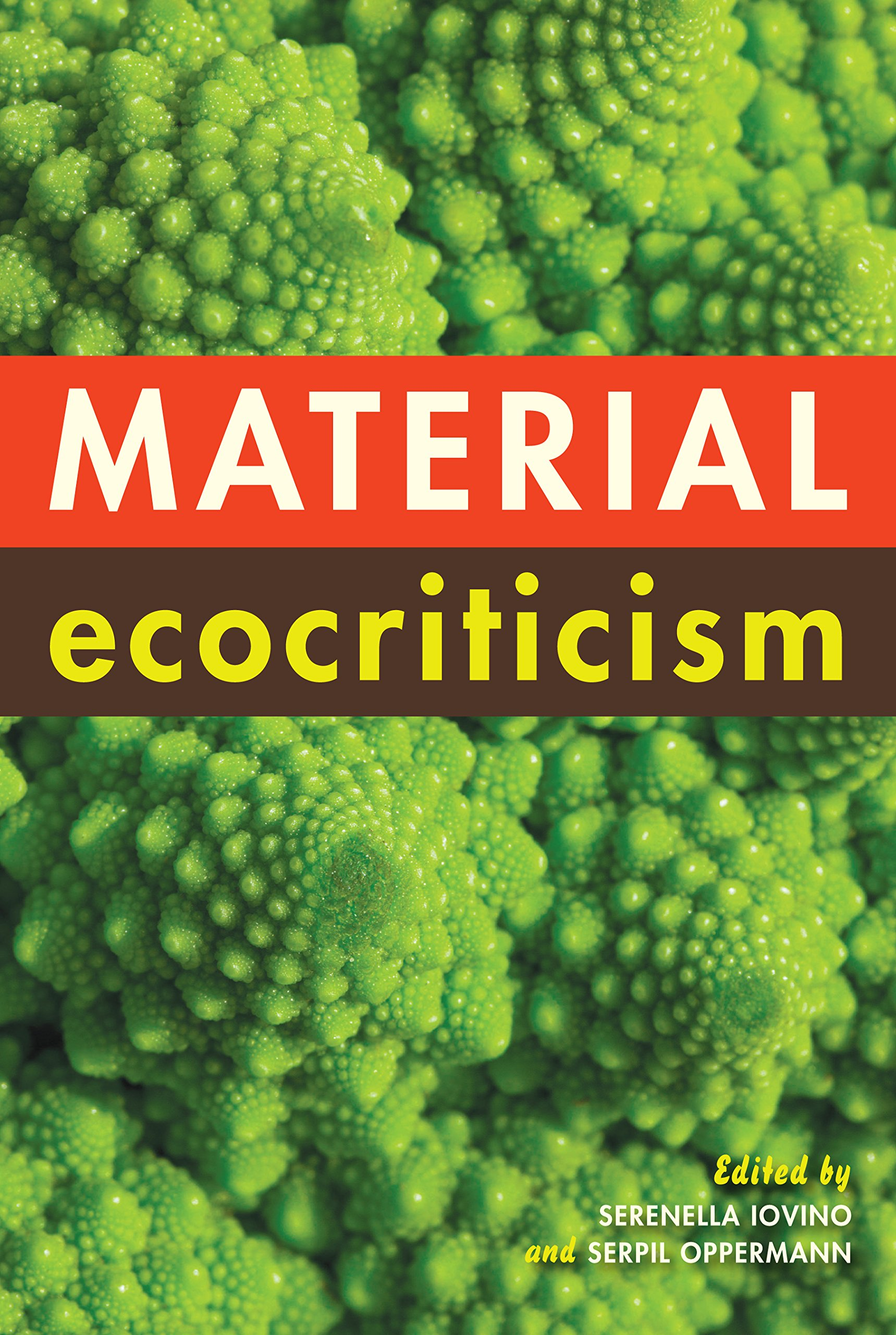 Image result for material ecocriticism iovino oppermann