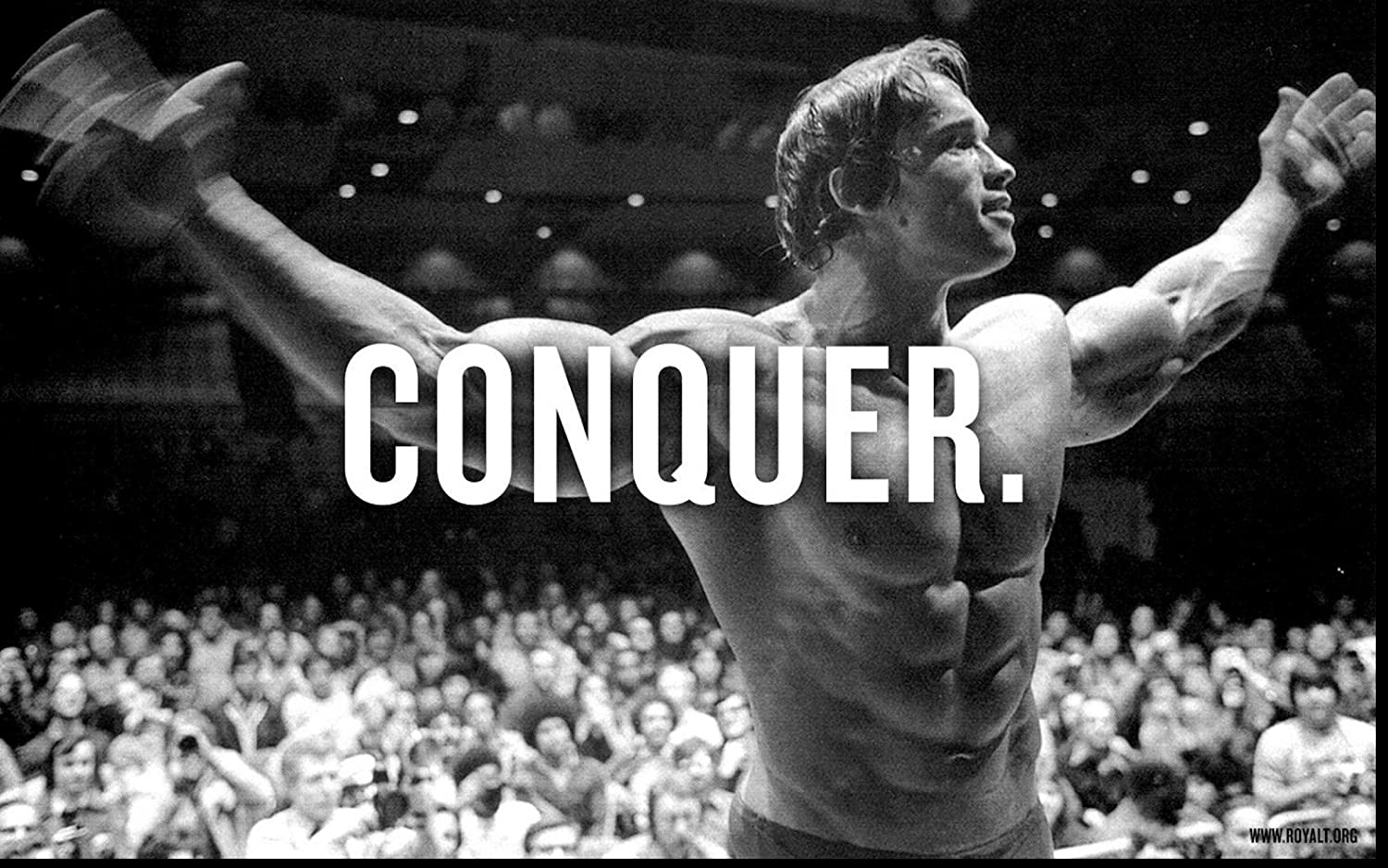 movie posters r' us Arnold Schwarzenegger Conquer - Body Building Wall Poster Print (36x24)
