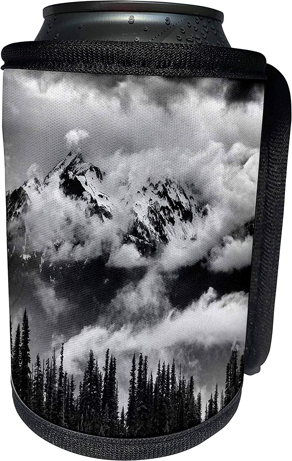 3dRose Danita Delimont - Olympic National Park - Washington State, Olympic National Park, Mount Carrie and Glacier - Can Cooler Bottle Wrap (cc_251496_1)