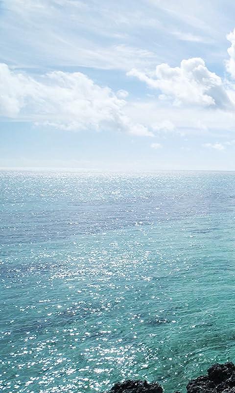 沖縄 宮古島の海 FVGA(480×800)壁紙画像
