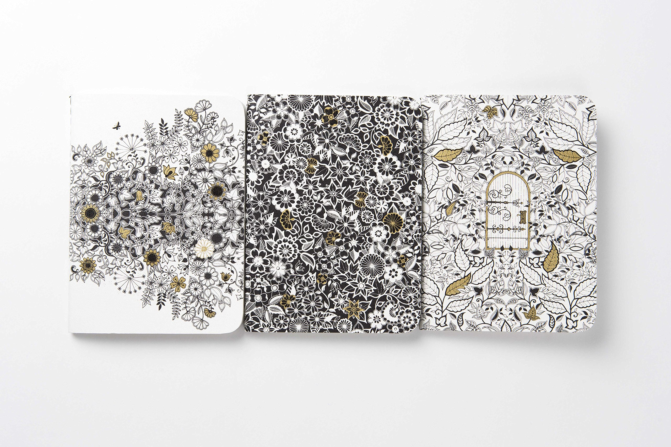Amazon Secret Garden Three Mini Journals 9781856699488 Johanna Basford Books