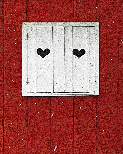 Amazon.com: Two of Hearts. Valentine\'s Day Photo depicting white ...