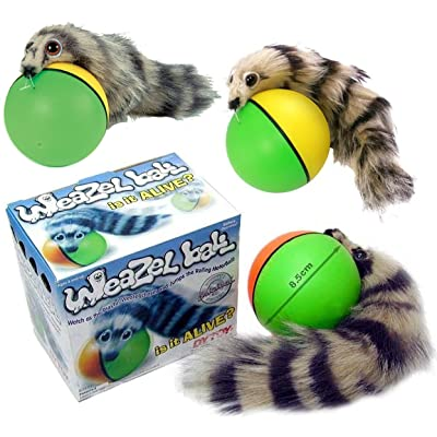 D.Y.TOY Weazel Ball - 3 Pack - Battery Operated Toy for Kids, Adults, Dogs or Cats: Toys & Games