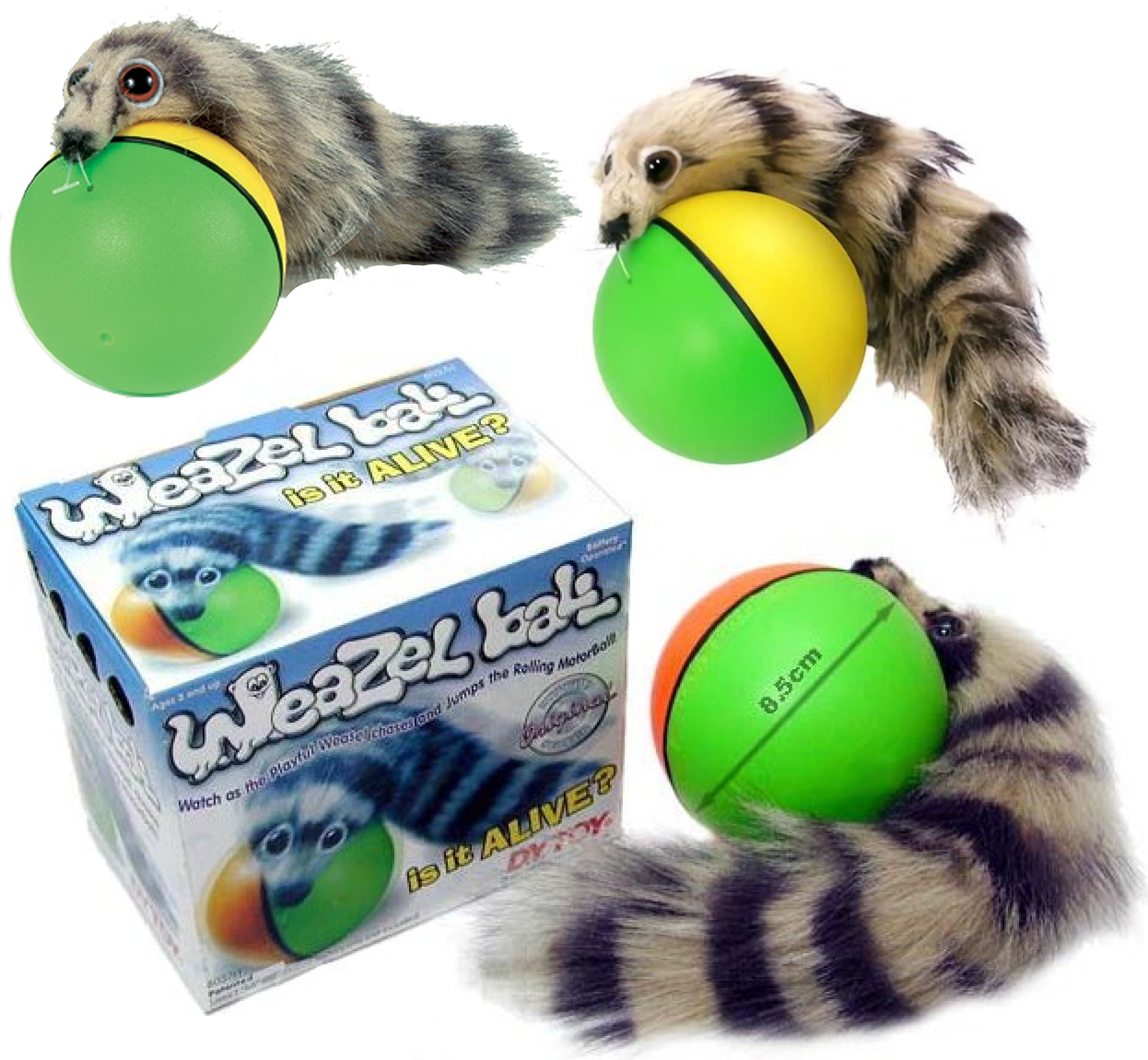 D.Y.TOY Weazel Ball - 3 Pack - Battery Operated Toy for Kids, Adults, Dogs or Cats by D.Y.TOY