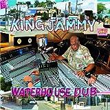Waterhouse Dub [Vinyl LP]
