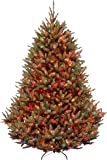 National Tree Company Pre-lit Artificial Christmas Tree | Includes Pre-strung Multi-Color Lights and Stand | Fraser Fir…