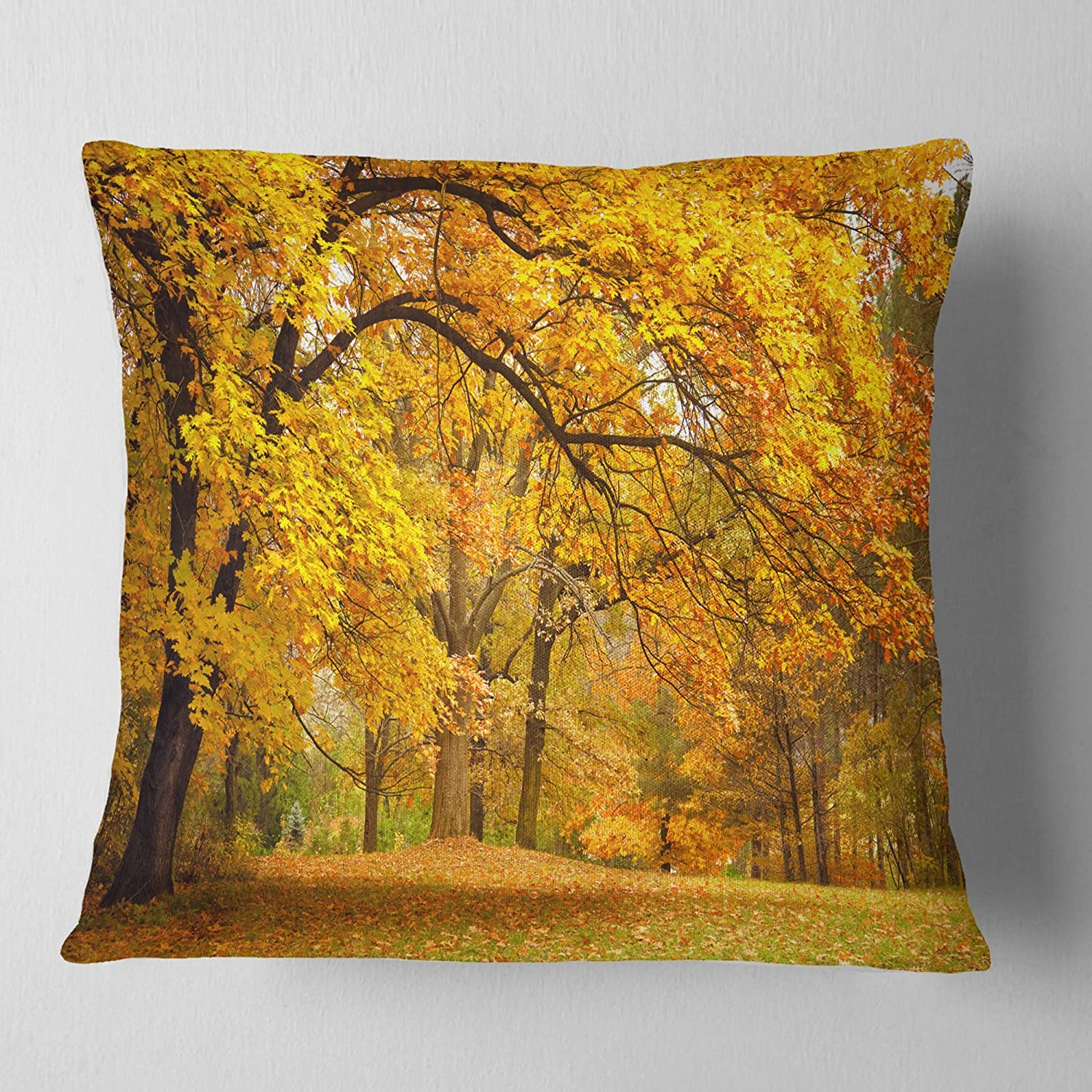 Designart CU6883-18-18 Golden Autumn Forest' Landscape Photography Cushion Cover for Living Room, Sofa Throw Pillow 18 in. x 18 in. in