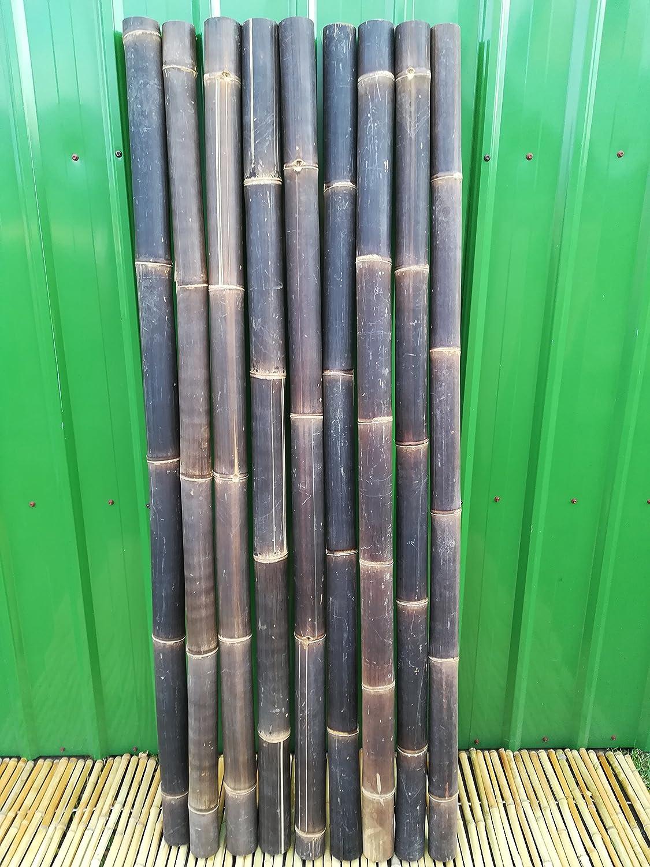 Bambusrohr Wulung Bambusstange Bambus Riesenbambus 1 x 7-8 cm x 2 m Wulung