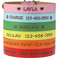 Custom Catch Personalized Dog Collar - Engraved Soft Leather in XS, Small, Medium or Large Size,…