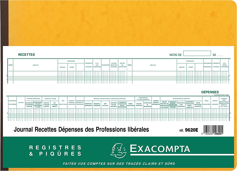 /Diario de gastos e ingresos para profesionales liberalse de 27 x 38 cm y con 80 p/áginas Colores aleatorios. /ref.9620E/ Exacompta/