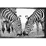 Artis 609620 glassart print plisson colts 2 45 x 65 cm - Glass art by artis ...
