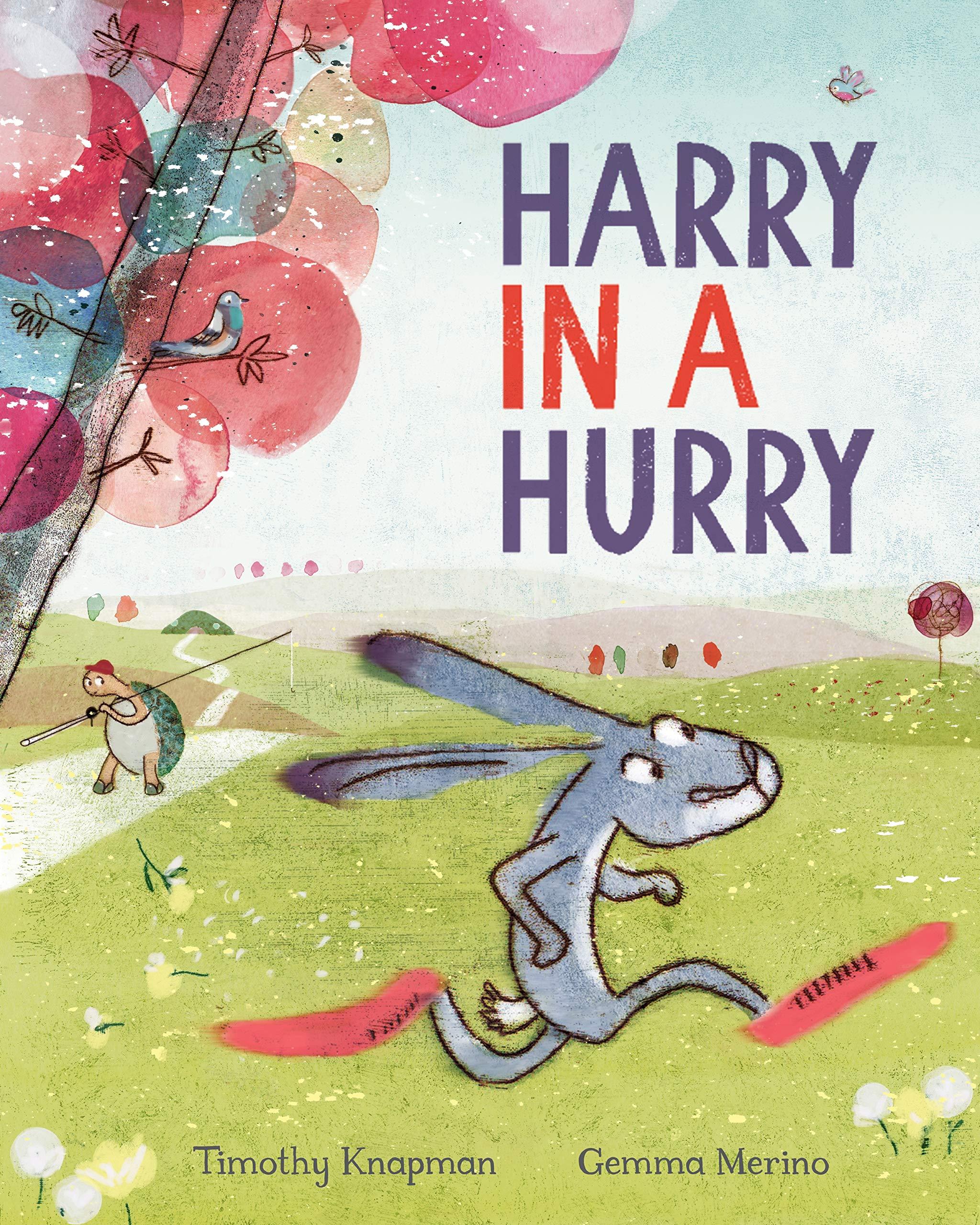 Harry in a Hurry: Amazon.co.uk: Timothy Knapman, Gemma Merino ...
