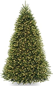 National Tree Company Pre-lit Artificial Christmas Tree   Includes Pre-strung Multi-Color LED Lights and Stand   Dunhill Fir - 10 ft