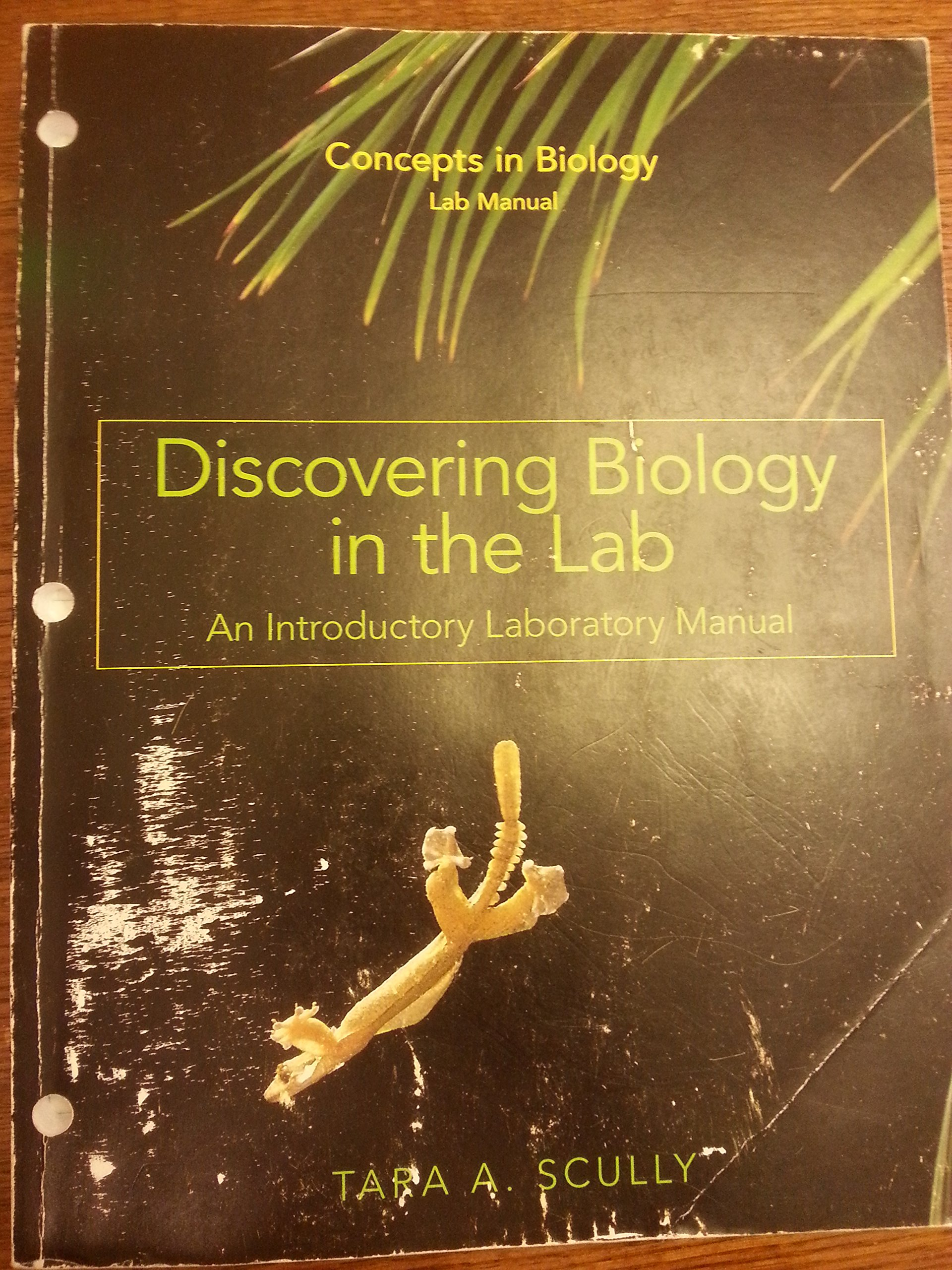 Read Online Discovering Biology in the Lab: An Introductory Laboratory Manual (Concepts in Biology Lab Manual) pdf
