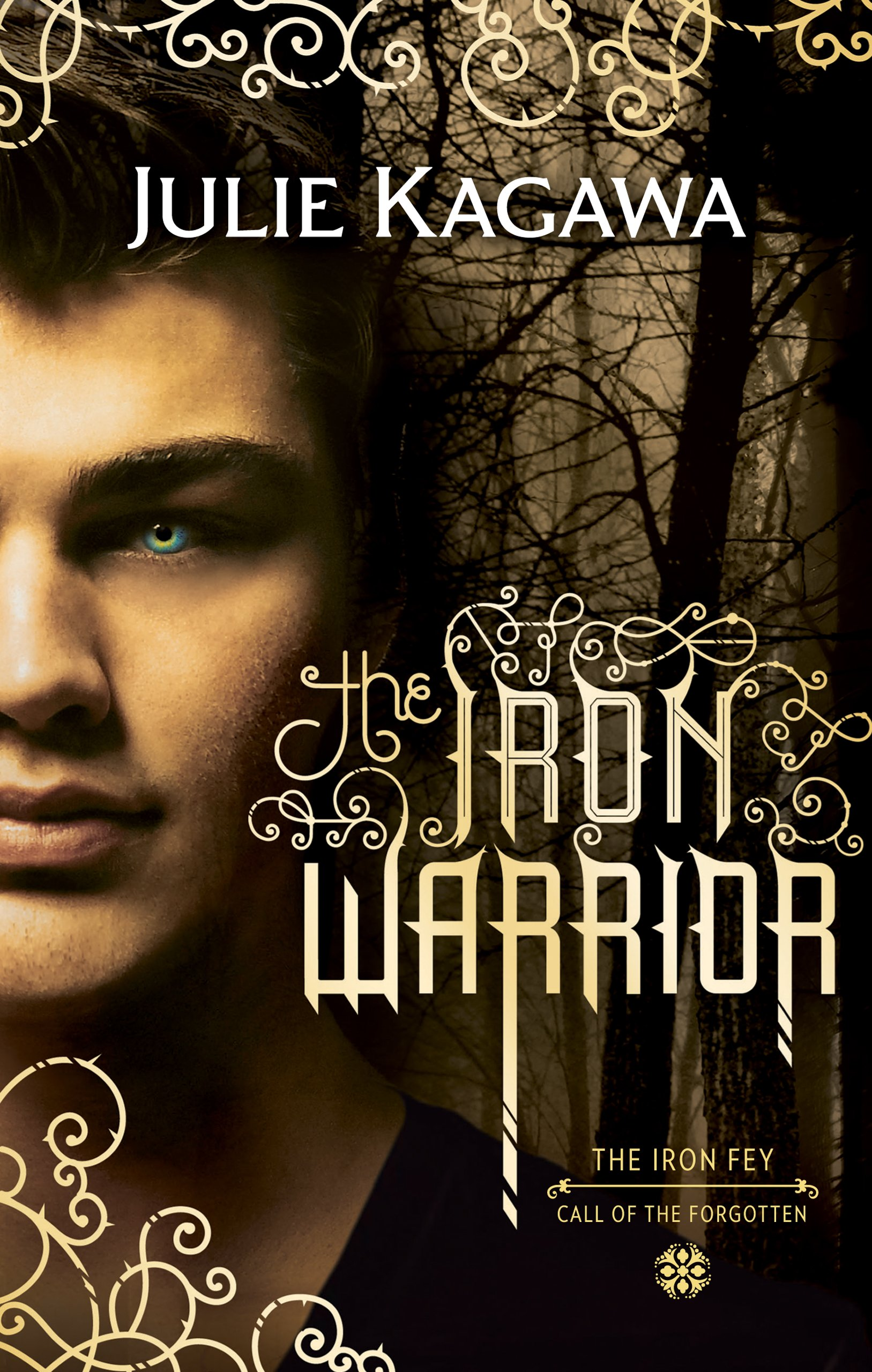 The Iron Warrior  The Iron Fey Book 7   English Edition