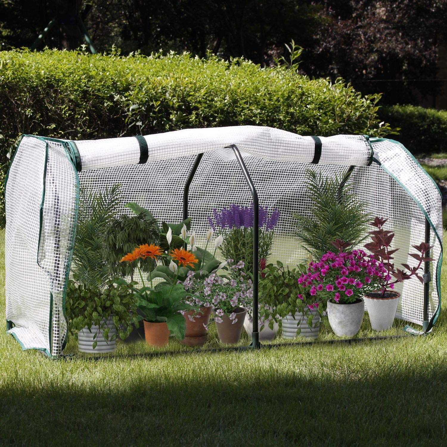 COZUHAUSE Mini Greenhouse with Clear Polyethylene Cover L48 W22 H24 Zipper Viewing Port Garden Green House